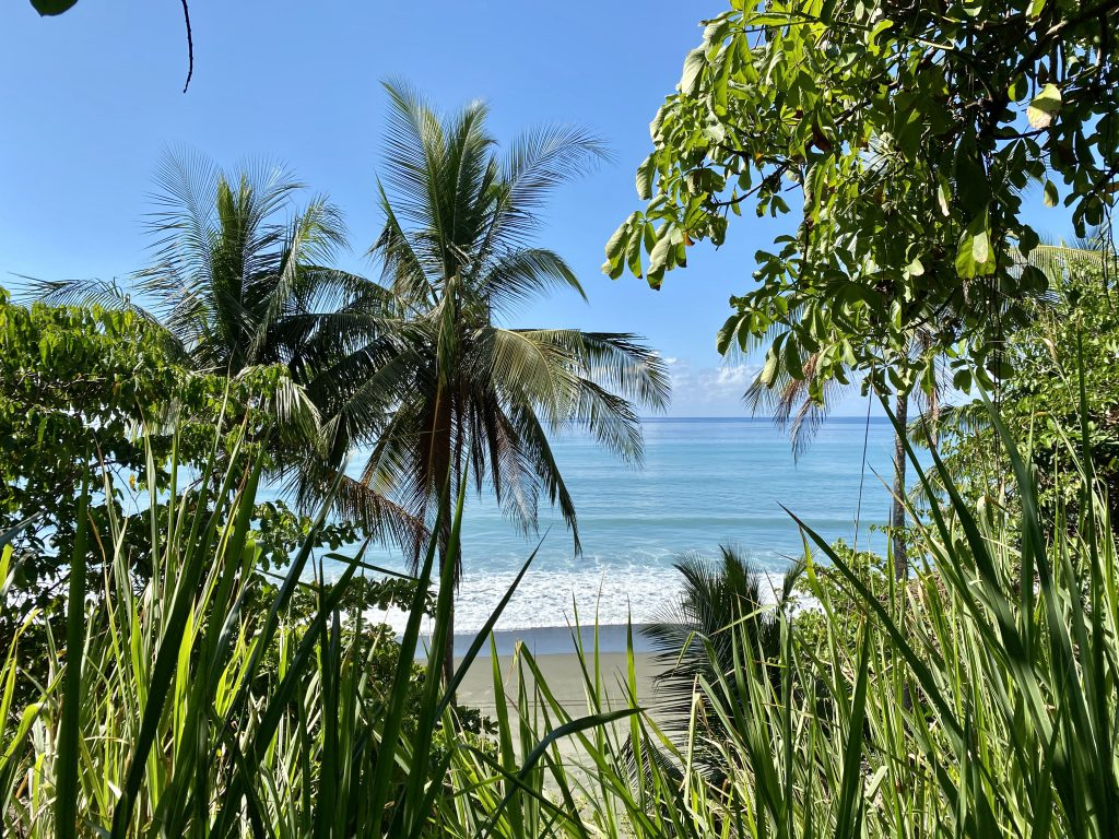 View from the beach near Corcovado National Park