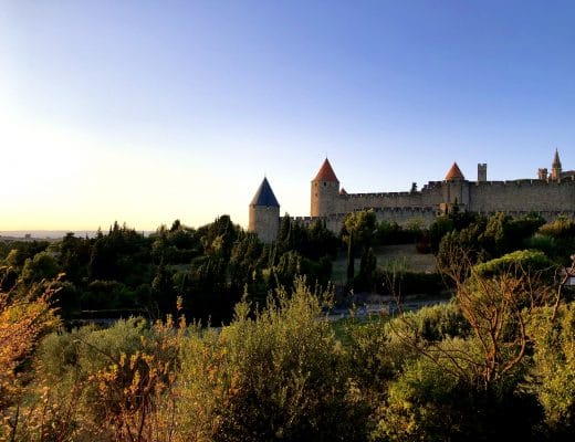 Carcassonne Medieval City and its vineyards
