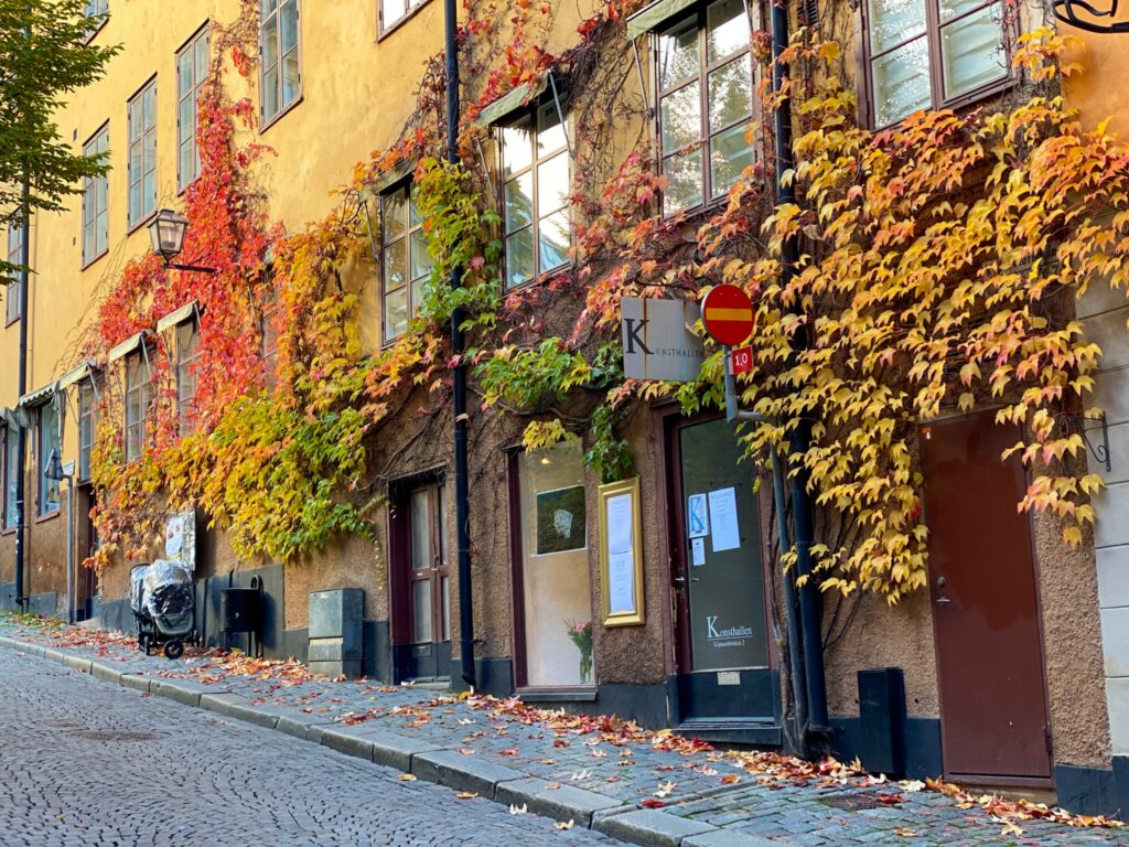 Leaves on the building - Stockholm
