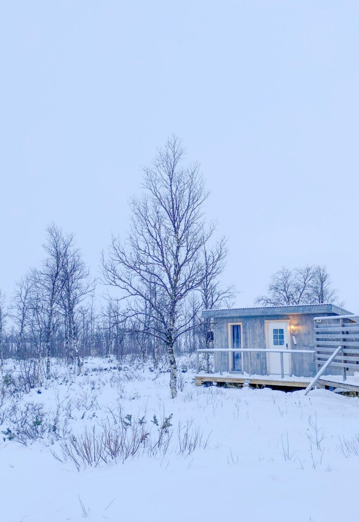 One of the Arctic Gourmet Cabins